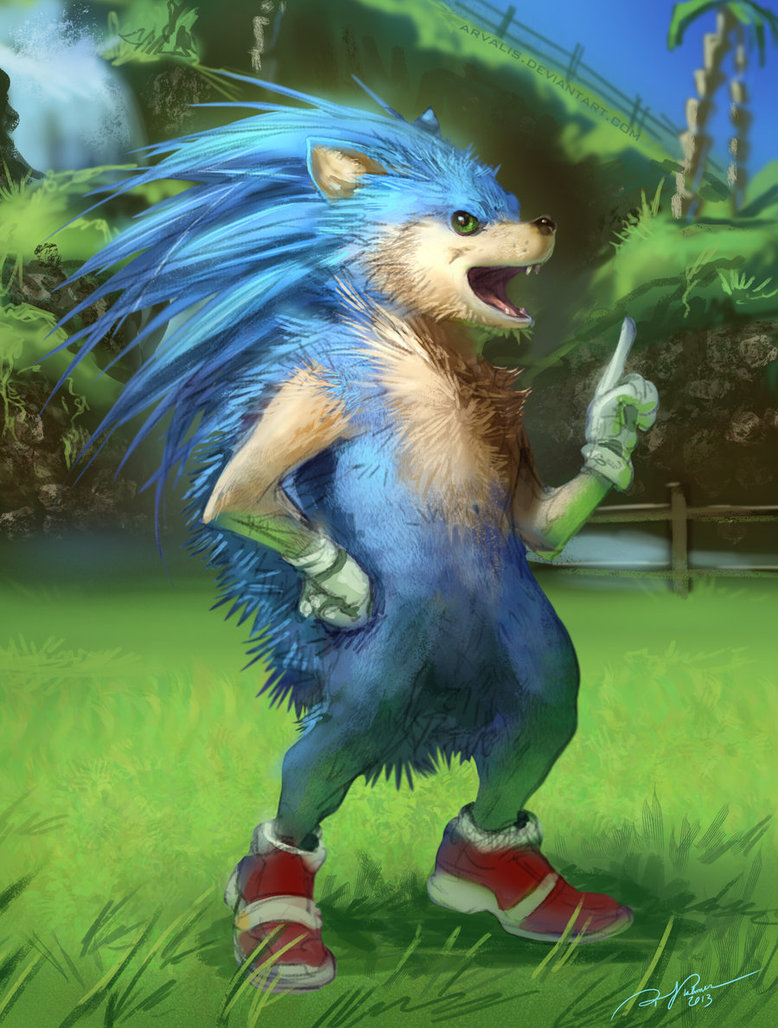 sonic_the_realhog_by_arvalis-d5sr701